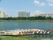 Dragonboats